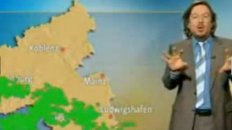 TV Weather Broadcasting While Kitty Walks Around On The Set