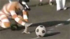Japanese Binocular Soccer