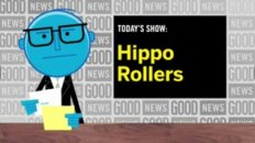 News: Hippo Rollers