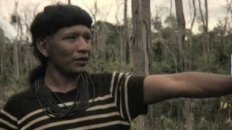 Amazon destruction Threatens Enawene Nawe Tribe