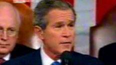 Bush Mashup